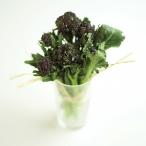 weight loss hypnotherapy leeds, west yorkshire image broccoli